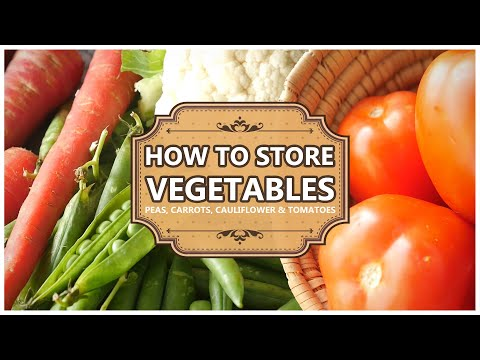 How to Store Vegetables - Methods by Food Fusion