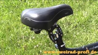 Raleigh Unico de Luxe XXL - Fahrrad für schwere und/oder große Fahrer