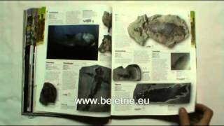 Kniha Prehistorie