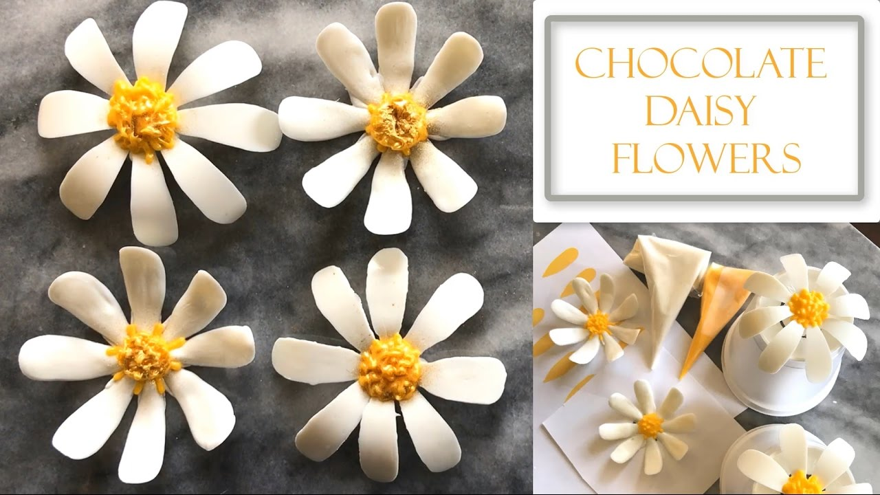How To Make Chocolate Daisy Flowers Two Design Concepts Youtube