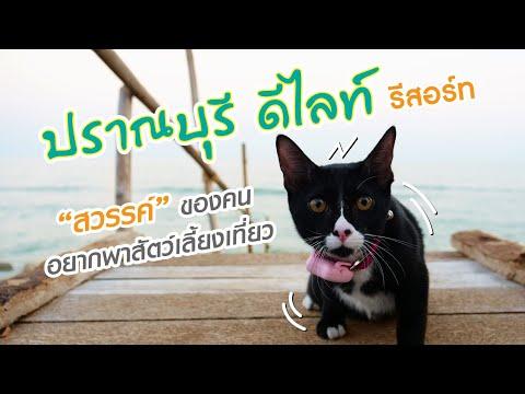 EP.04 : ปราณบุรี ดีไลท์ รีสอร์ท
