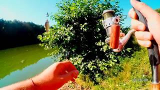 Рыбалка на карася и карпа. Снасть: макух + горох и макух + пенопласт [Отчеты о рыбалке].(Рыбачил как обычно на макух + горох и макух + пенопласт, а так же добавил кружки на горох, но карпа так и не..., 2016-08-07T20:24:11.000Z)