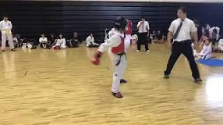 (社)日本ITFテコンドー協会 http://itf-taekwondo.jp/