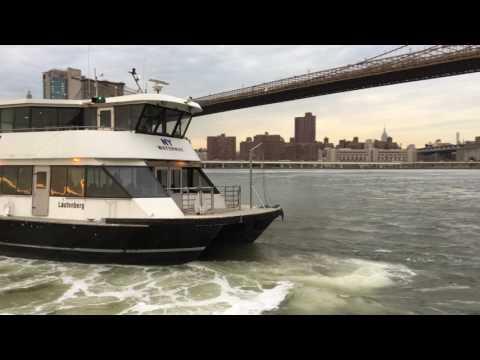 Coolest Boat Captain