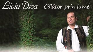COLAJ MUZICA POPULARA 2015 - LIVIU DICA (Album Calator prin lume)