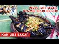 Lele Bakar + Cah Kangkung +Tempe Bacem + Lalapan Saladah dan Paria Gengge!!