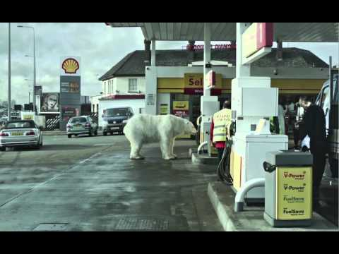 A homeless polar bear in London ft. Jude Law and Radiohead