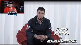 Anuel Le Pide Disculpa a Puerto Rico,Taina,Fanaticos y Mas - Mi Opinion