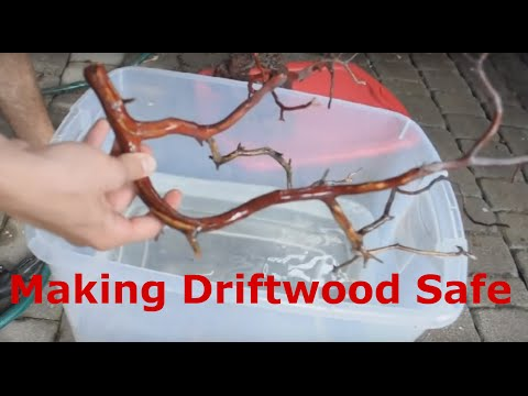 Making Rocks and Driftwood Aquarium Safe