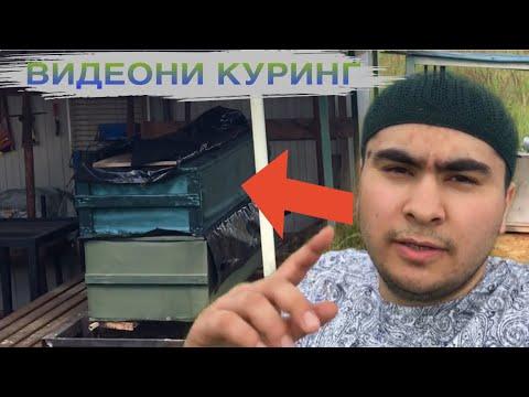 Жума муборак КАРАНТИНДА ХАММА КУРСИН РУСС ВА МУСУЛМОНЛАР КАБРИСТОНИ ОЛДИДА