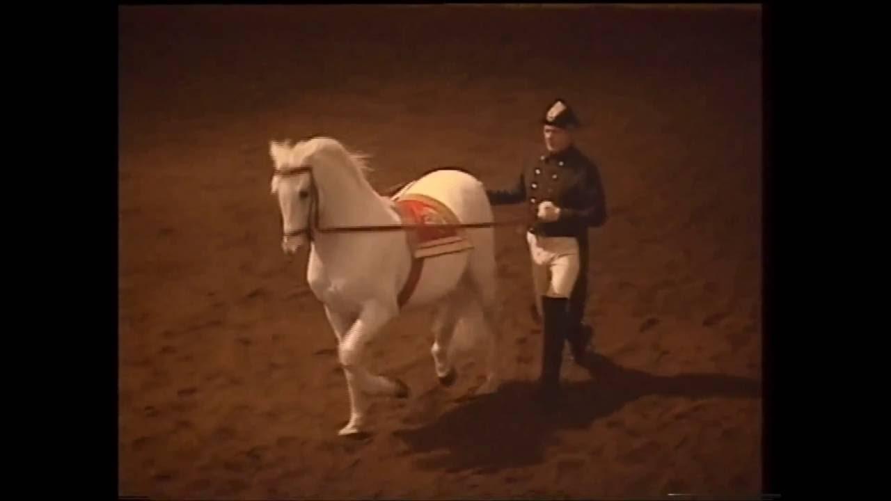 Spanische Reitschule Wien 1994 46 Am Langen Zügel Youtube