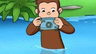 Jorge el Curioso en Español 🐵En Busca de Huellas de Animales 🐵Mono Jorge 🐵Caricaturas para Niños