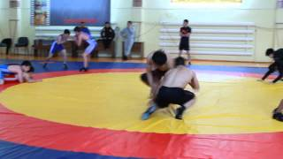 Kazakhstan freestyle wrestling team