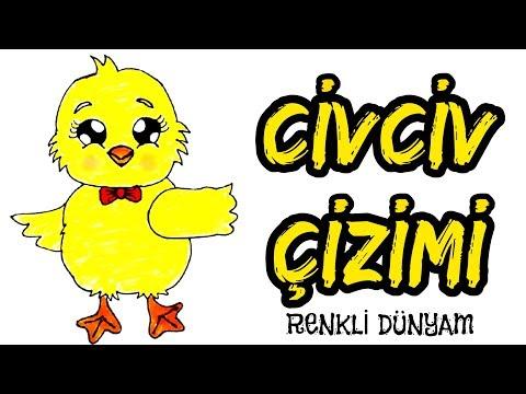 Civciv Nasil Cizilir Civciv Cizimi How To Draw A Chick Renkli