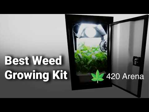 Best Weed Growing Kit: Complete List with Features & Details - 2019