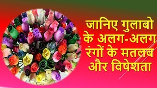 Different Rose Colors meaning & Shayari in Hindi (Valentine Rose Day Special)