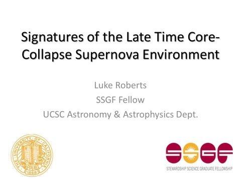 DOE NNSA SSGF 2011: The late time core collapse supernova environment