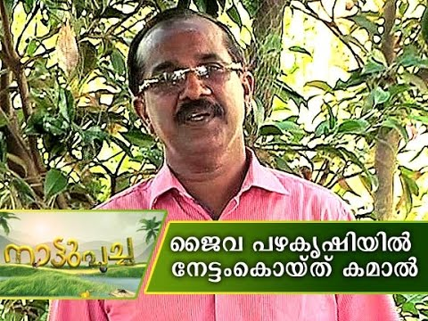 Kamaal's Organic Fruit farming | Manorama News