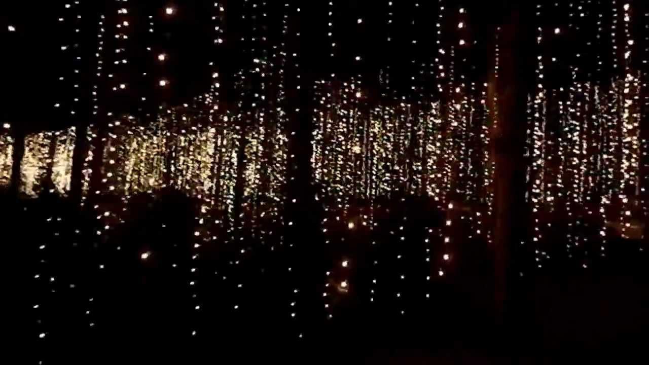 Callaway Gardens Fantasy In Lights Video 4 Youtube