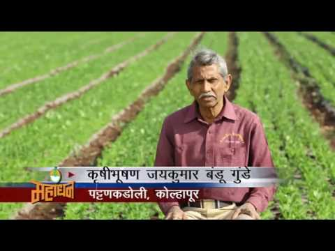 Mahadhan Fertiliser Farmer Speaks 2017