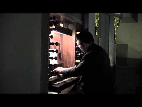 From Harmony: Organ Improvisation Recital For Saint Cecilia Day (Vidas Pinkevicius)