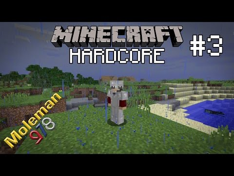Let's Play Hardcore Minecraft #3 | Houses, Witches and Farms