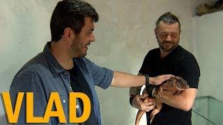 RECEBI O VLAD DO CANAL ÁREA SECRETA EM CASA! | PARTE 2 | RICHARD RASMUSSEN