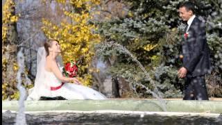 Чертково Мария + Денис WEDDING