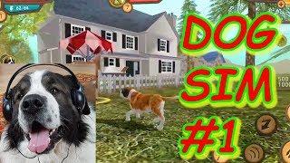 Dog Sim #1. Летсплей Симулятор собаки онлайн. Прохождение. Булат играет в игры