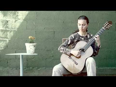 elina   guitars on the camino de santiago
