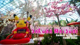 Gardens by the Bay Flower Dome - Sakura Matsuri