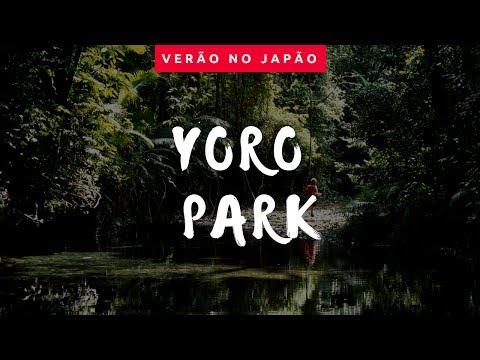 Conheça o Yoro Park!