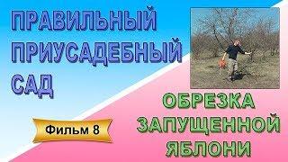Правильный приусадебный сад Фильм 8 Обрезка запущенной яблони