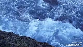 موسيقى هادئة مع صوت البحر ( دالية )