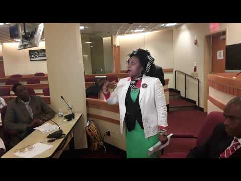 African business summit in African Union in NYC on 11th may 2017