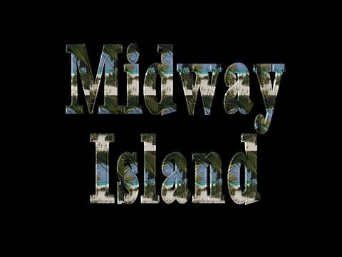 Midway Island - A Battle Lost To U.S. Fish And Wildlife Service