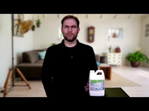How To Remove Odors From Carpet