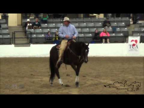 Shane Ogden & Kyla's Harmony Retired Racehorse Project Thoroughbred Makeover 2015