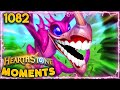 There Are Too Many FLAPPY BIRDS | Hearthstone Daily Moments Ep.1082