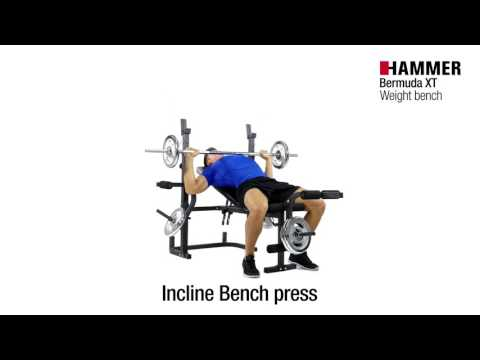 Weight Bench | Bermuda XT | HAMMER
