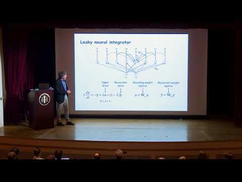 David Heeger, NYU: ORGaNICs: A theory of working memory in brains and machines