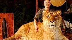 Die komischsten Hybrid-Tiere, die wirklich existieren!