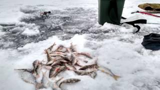 Рыбалка Каменка. Луганская область.