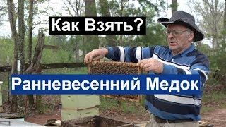 Пасека #114 Ранневесений Медок.Какие Рамки я Отбираю . / Пчеловодство для начинающих