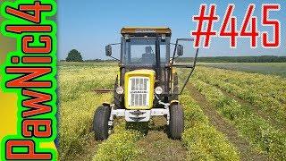 Koszenie rumianku od samego rana - Życie zwyczajnego rolnika #445