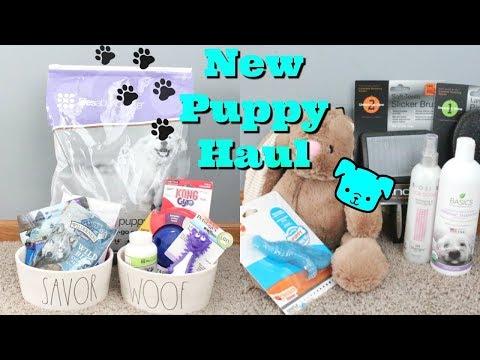 New Puppy Haul | Puppy Haul