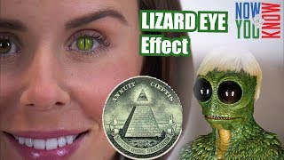 How to Create a Reptilian Eye Effect in Adobe Premiere - VLearning