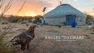 EAGLE'S DAYMARE (SOUNDTRACK)