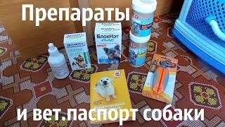 Препараты и ветеринарный паспорт собаки.(, 2015-10-22T11:22:56.000Z)