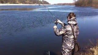 Рыбалка в черте города. Гомель 26.03.2016